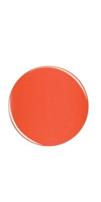 732 Tangerine Dreamz